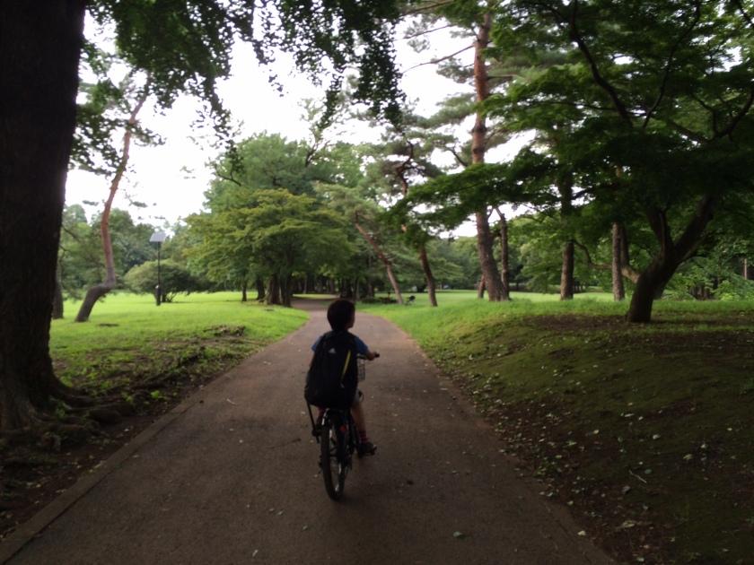 野川公園内。緑が生い茂りとても気持ちよくサイクリングできます