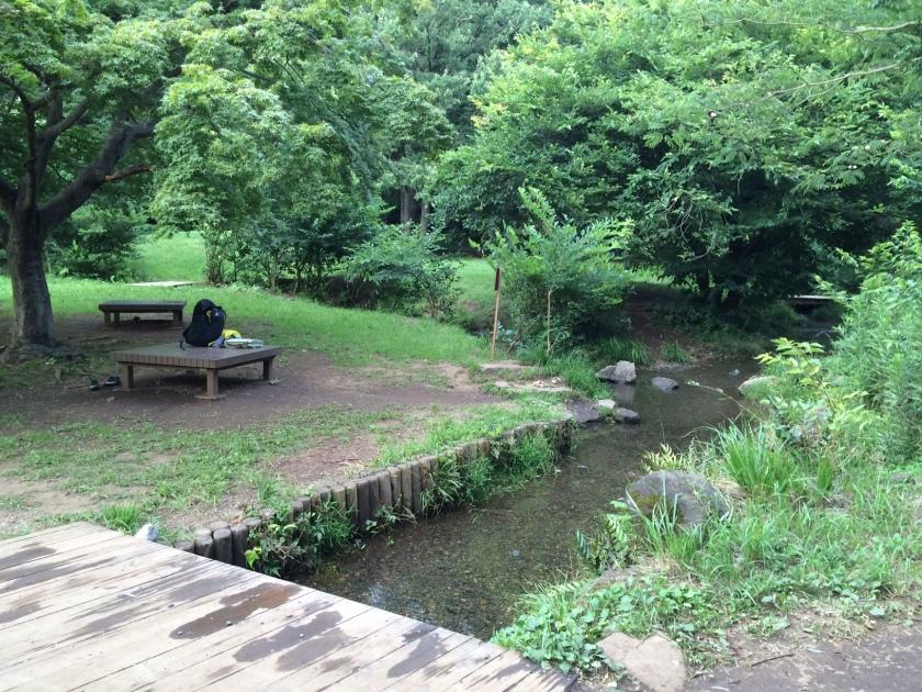 野川公園「わき水広場」