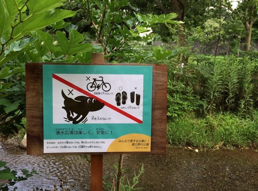 野川公園「わき水広場」の注意事項