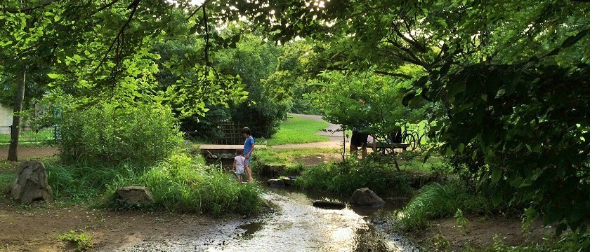 わき水で水遊び!子どもと一緒に夏を満喫~野川公園~