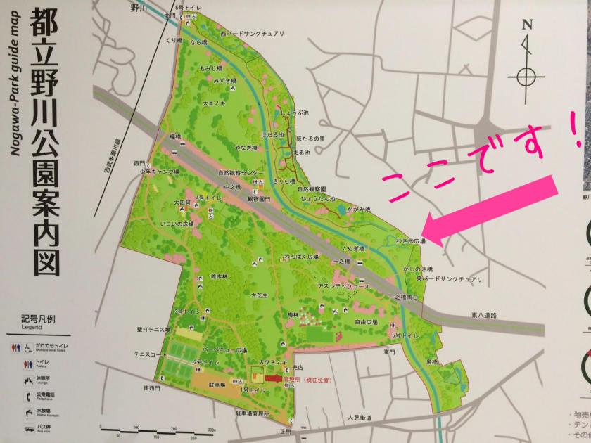 野川公園の案内図