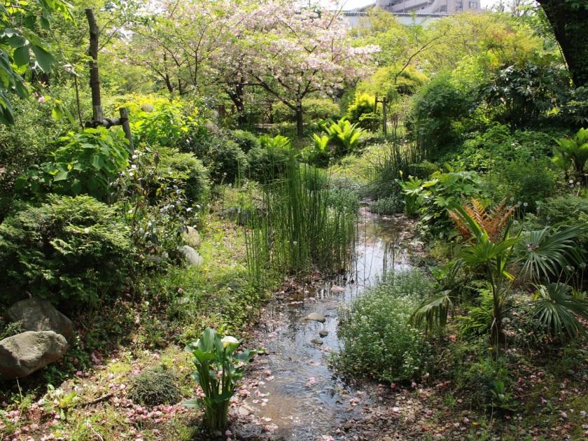 アンジェ庭園