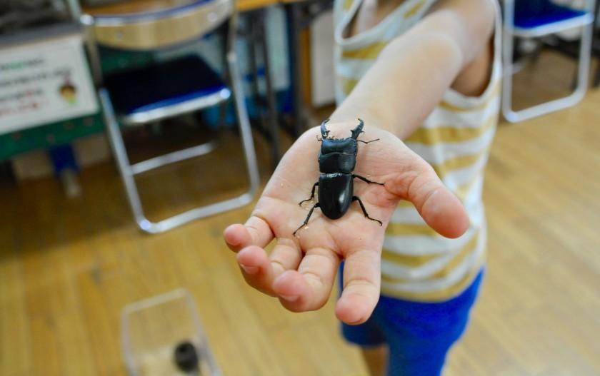 生き物に触れて、遊んで、大満足のプチテーマパーク ~多摩川自然情報館~
