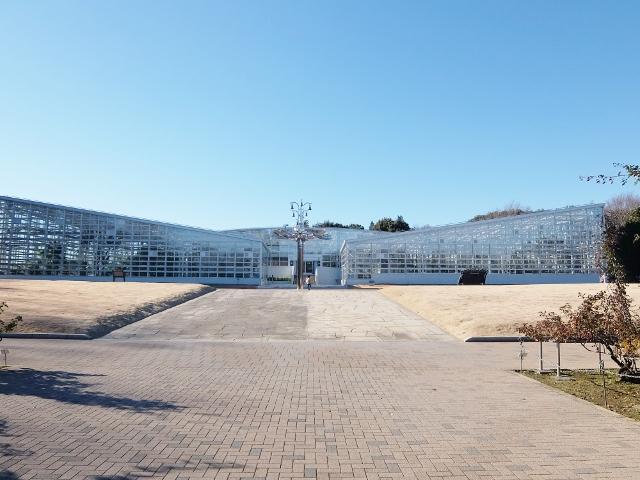 おでかけ日和 神代植物公園大温室