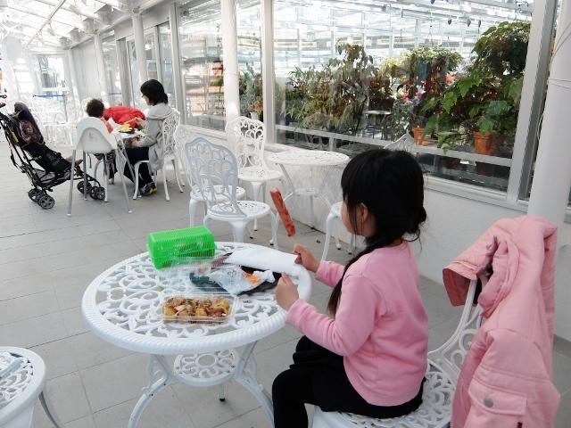 おでかけ日和23 神代植物公園大温室