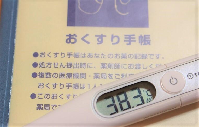 インフルエンザ、 流行らせているのは大人!?