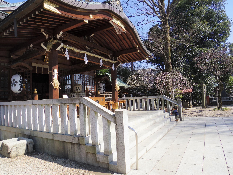 ブログ更新 安産祈願、いざ布多天神社へ
