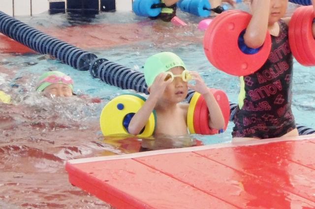 アクラブ調布 調布金子スイミングスクール ジュニア水泳