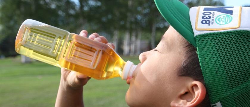夏本番!熱中症対策のキモは「風」「水分補給」