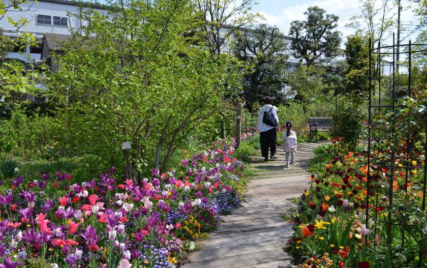 親子3代で春を満喫♪京王多摩川駅近の欧風庭園