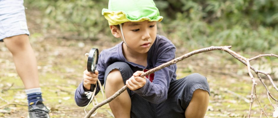 子どもと歩く 自然と遊ぶ その2の画像