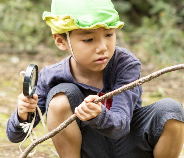 子どもと歩く 自然と遊ぶ その2